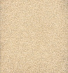 Lace Fabrics 145CM